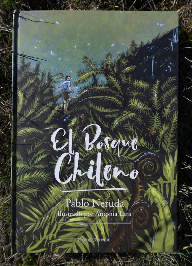 el-bosque-chileno_portada