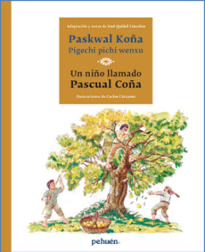 Paskwal Koña pigechi pichi wenxu / Un niño llamado Pascual Coña