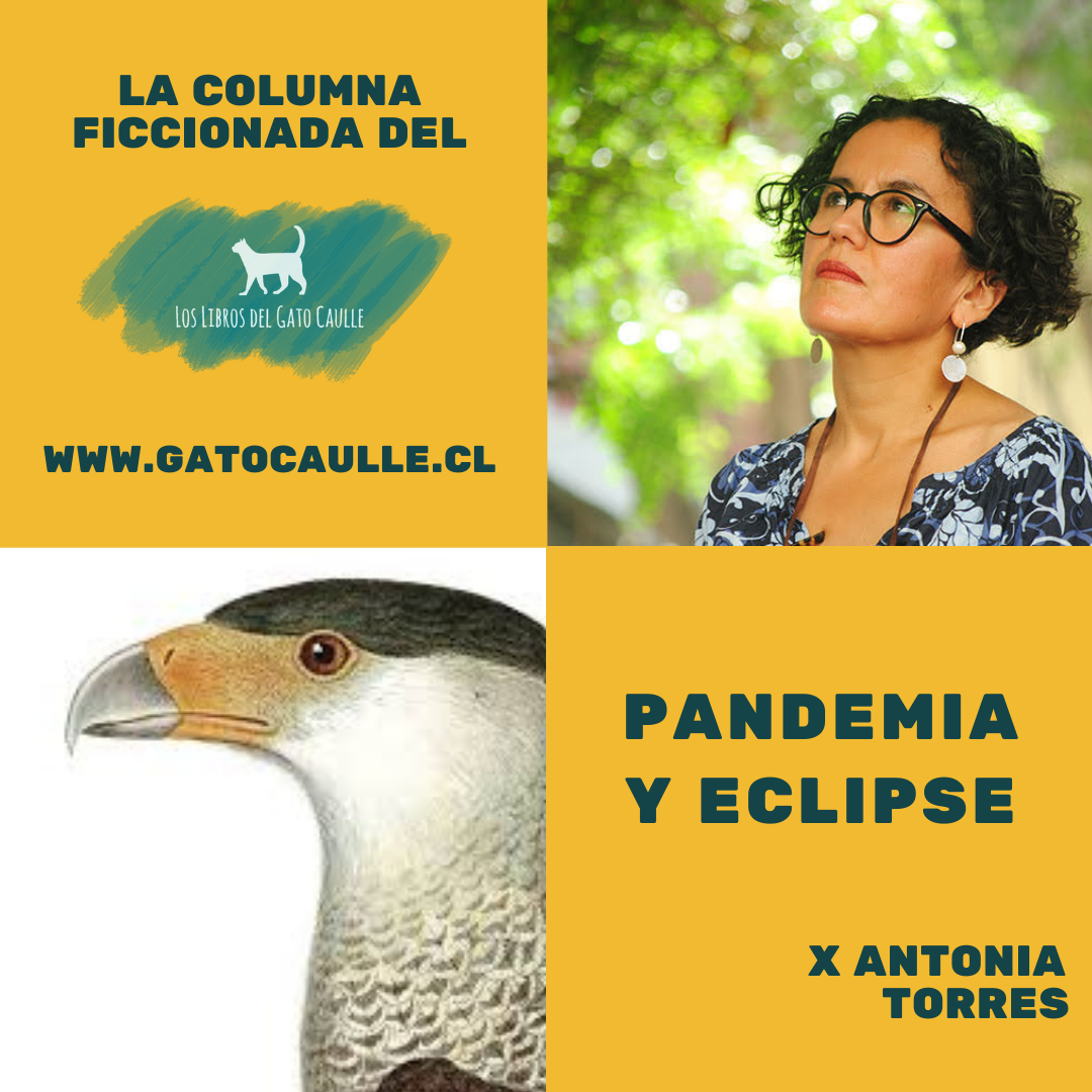 Pandemia y Eclipse