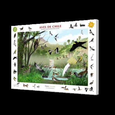 Aves de Chile: Rompecabezas e identificación